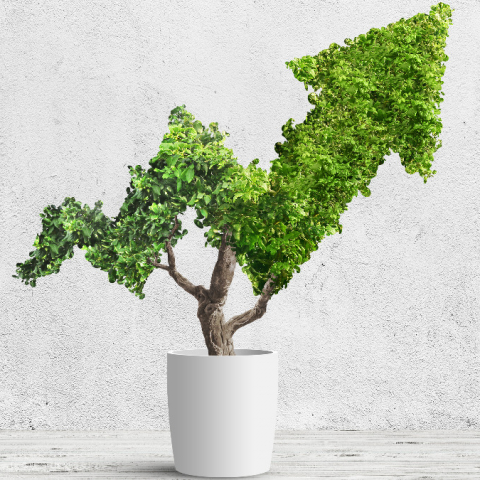 Are you ready for the new rules on ESG investment coming into force in March 2021?